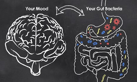 Probiotics -  The Gut-Brain Axis