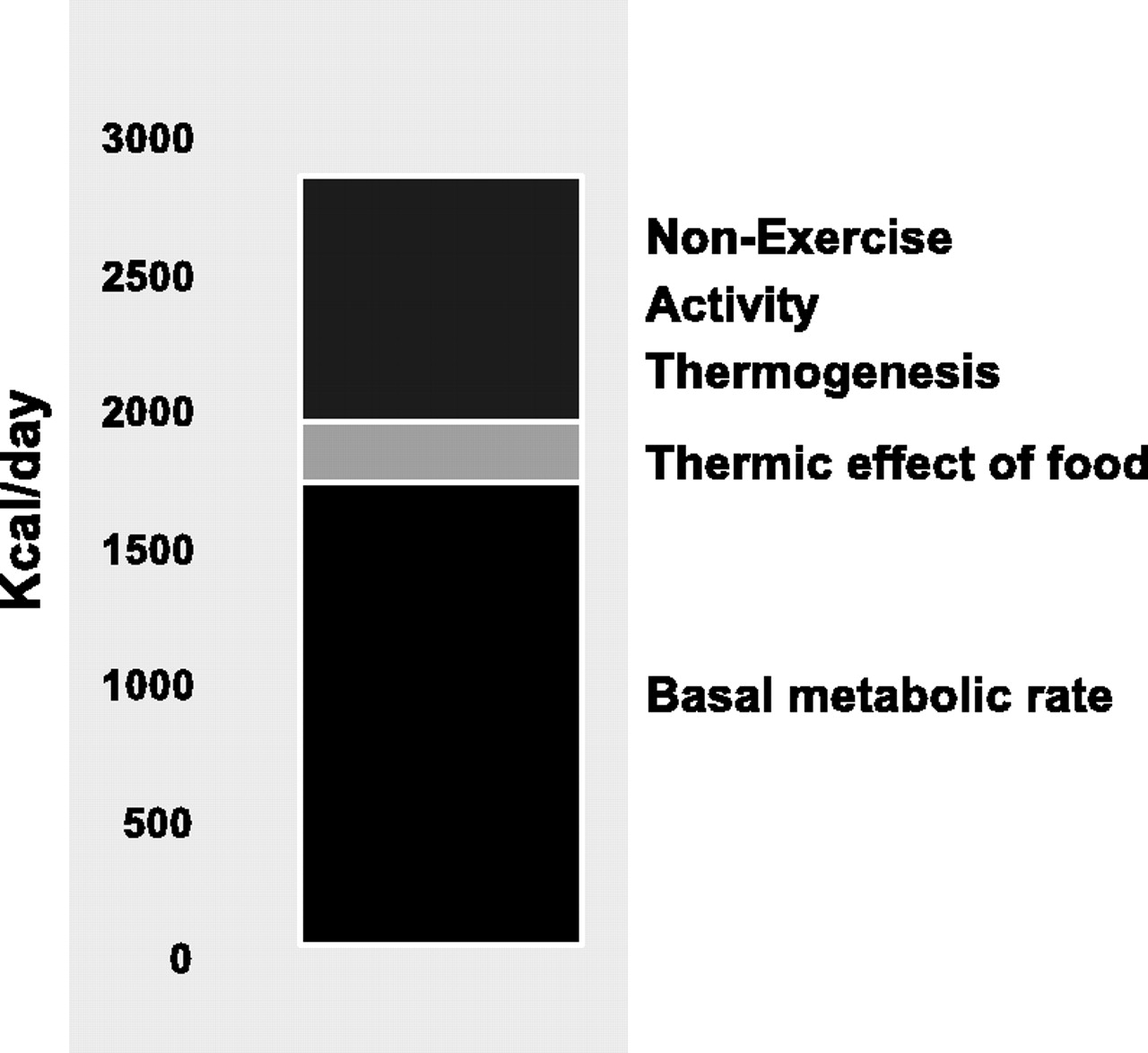 NEAT (non-exercise activity thermogenesis)