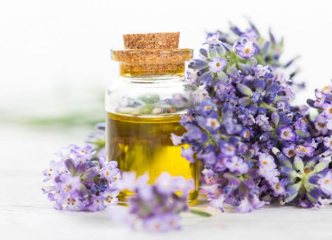 Lavender in Your Daily Life - Four Little-Known Uses