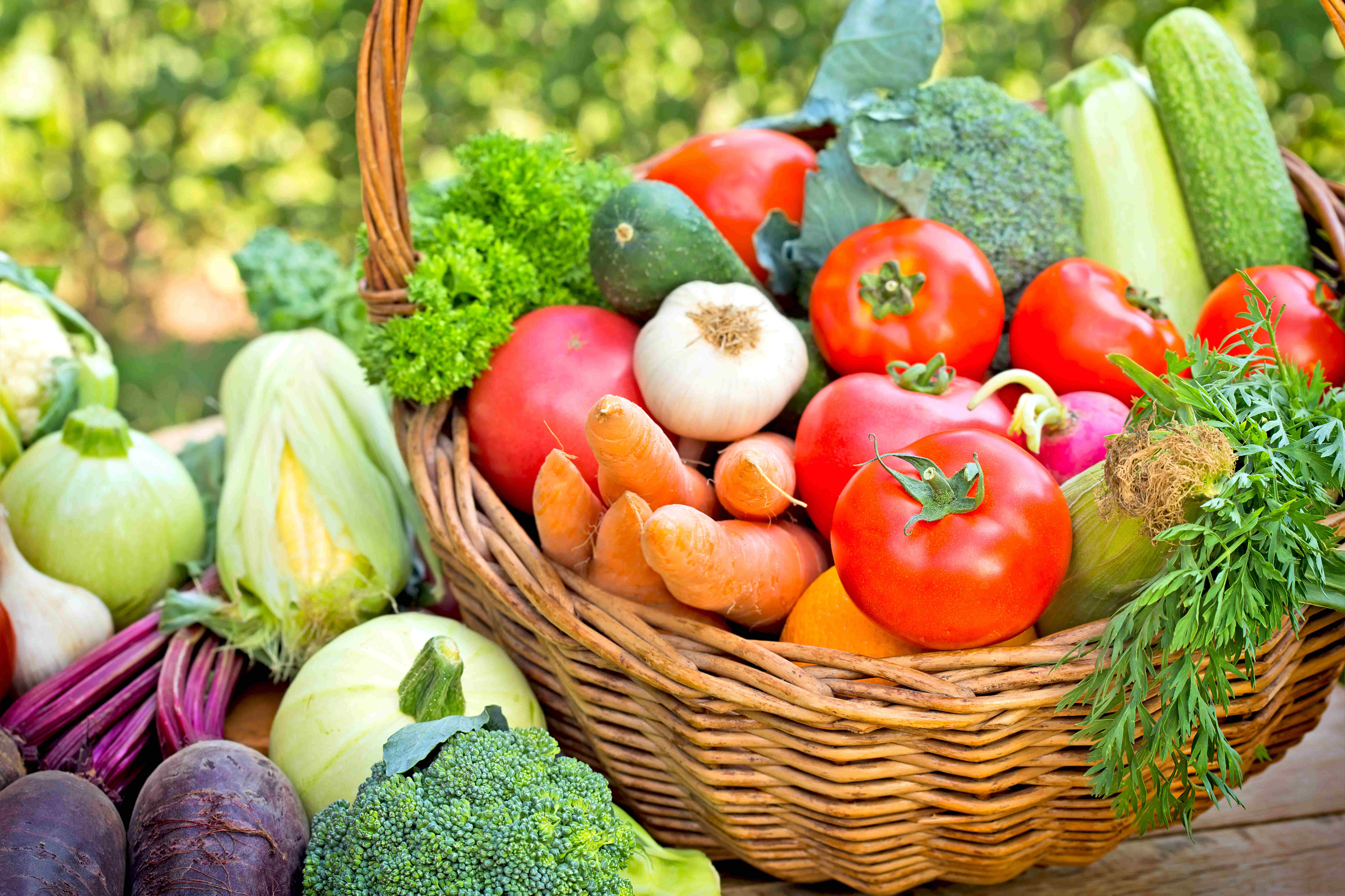 Vegetarian Diets and Anemia